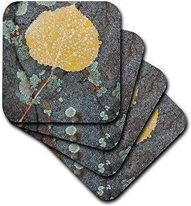 3D Rose Colorado - Uncompahgre National Forest Frozen Aspen Leaf Soft Coasters, Multicolor