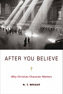How christianity changed the world kindle edition by alvin j after you believe why christian character matters fandeluxe Epub