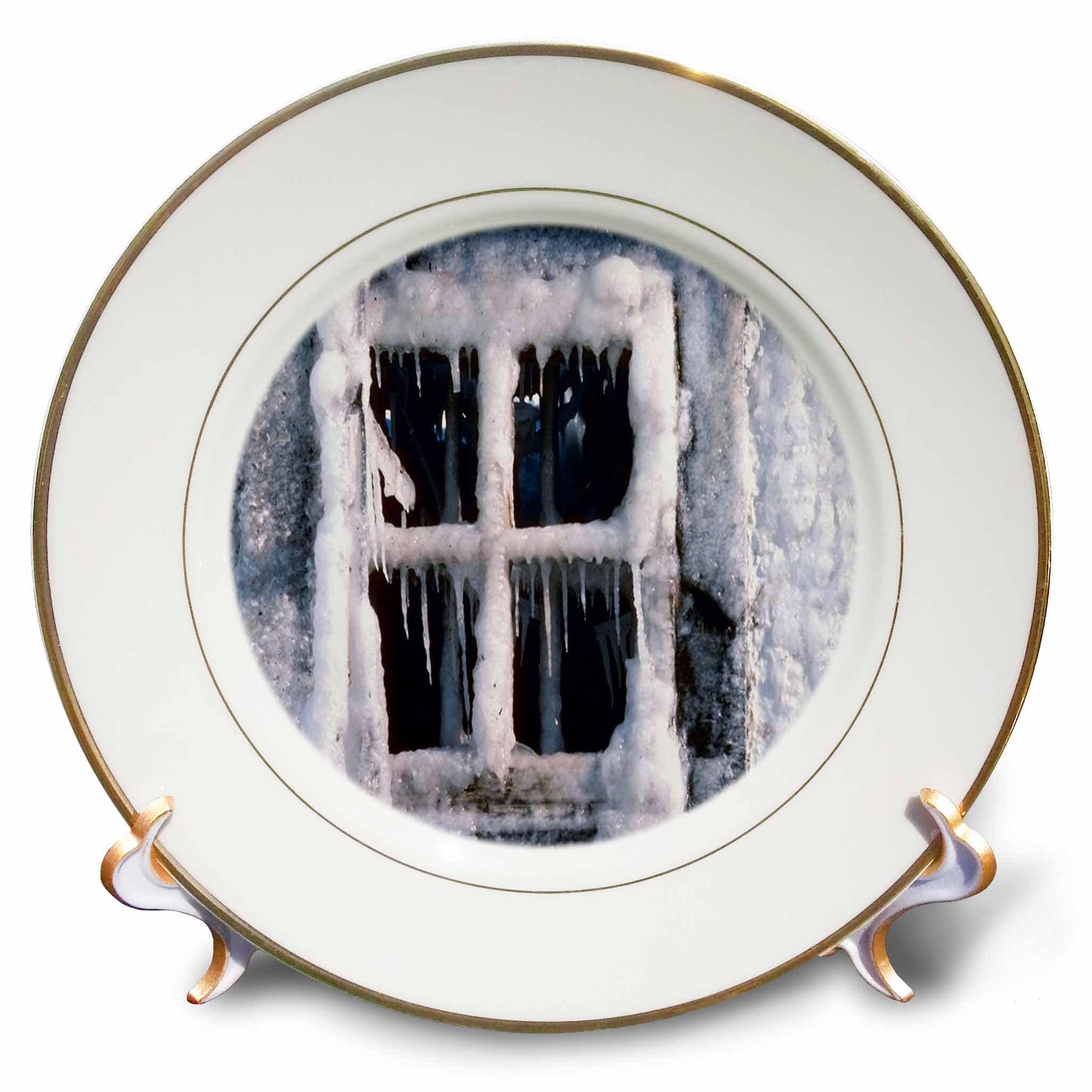 3dRose TDSwhite – Winter Seasonal Nature Photos - Snowed In Window - 8 inch Porcelain Plate (cp_284914_1)