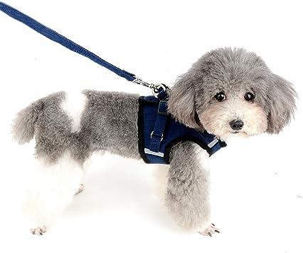 Ranphy - Arnés para Mascotas con Correa para Perro pequeño, arnés ...