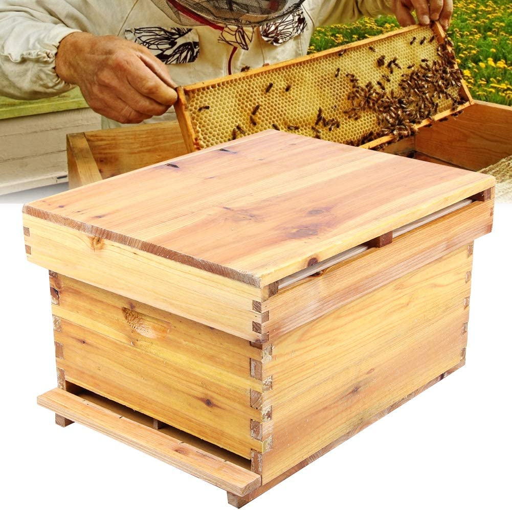 4pcs Bee Cage Beehive Honey Beekeeping Queen Cage Beekeeping Tool Fg