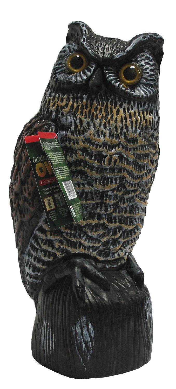 Superieur Amazon.com : Garden Defense Owl Decoy (Natural Bird Deterrent) : Home Pest  Repellents : Garden U0026 Outdoor