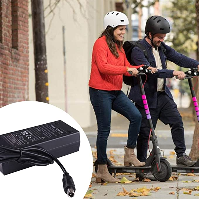 Amazon.com: Pilan Bird & Lime Scooter Charger 42V 2A - Bird ...