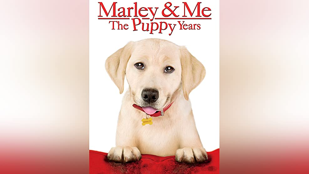 watch marley and me online free