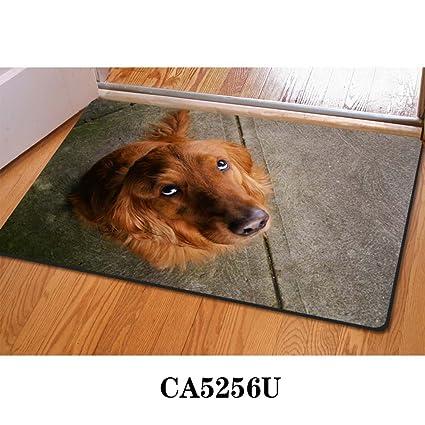 Funky Door Mats, 3D Dog Puppy Print Home Doormat Entrance Rugs Kitchen  Bathroom Bedroom Funny