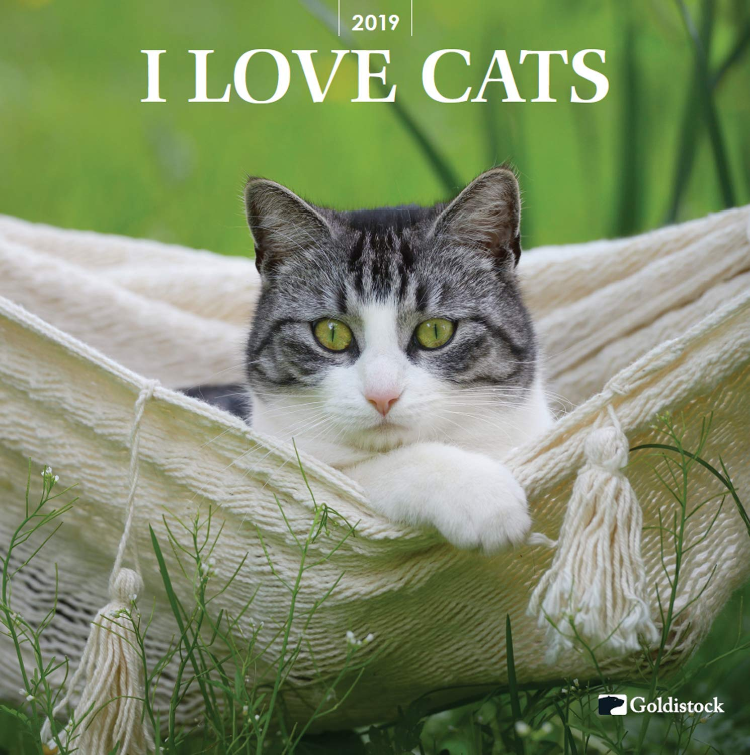 Goldistock -''Cat Lovers'' Eco-Friendly 2019 Large Wall Calendar - 12'' x 24'' (Open) - Thick & Sturdy Paper - Purrfect for Cat Lovers