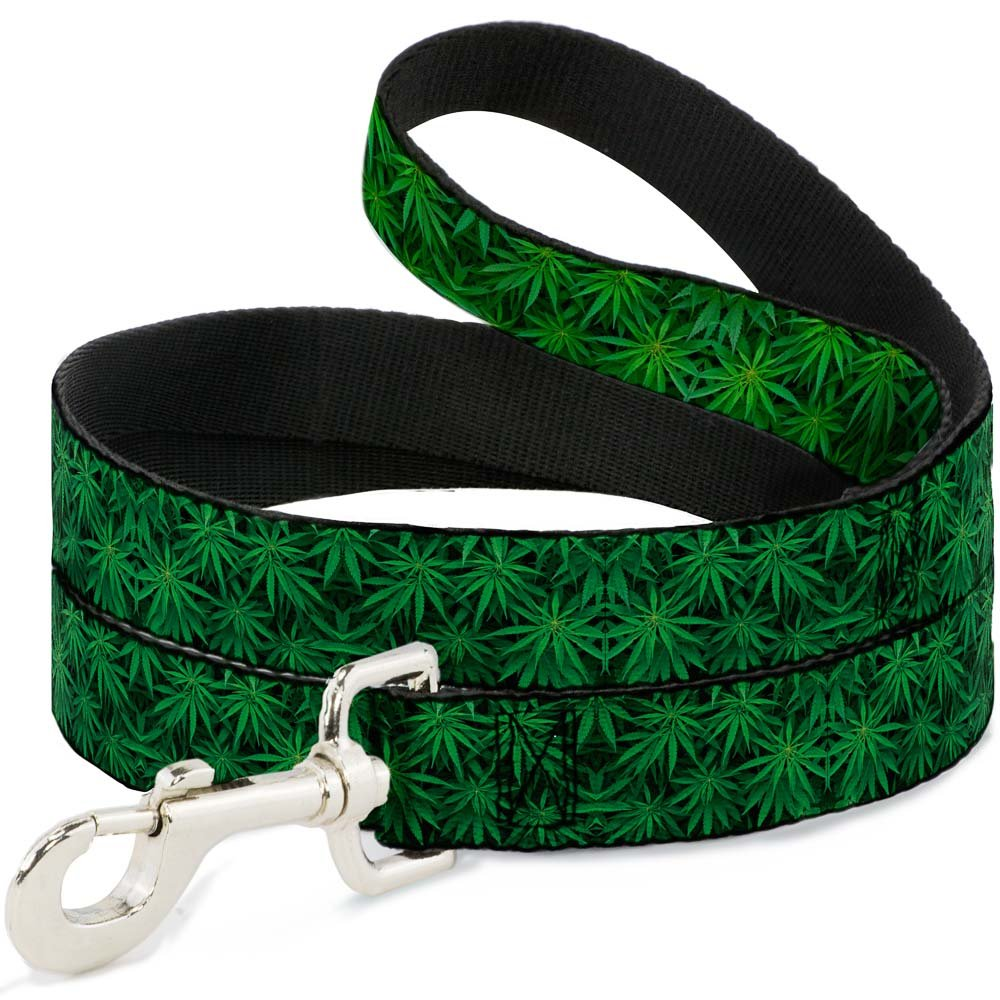 6Ft. Long  1.0 Inches wide Regular Buckle-Down Vivid Marijuana Leaves Stacked  Dog Leash, 6'