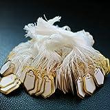 B Blesiya 500Pcs White Price Tags with String