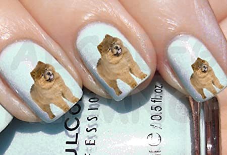 Aws Set Water Newsee Decals Brown Chow Chow Dog Nail Art Stickers