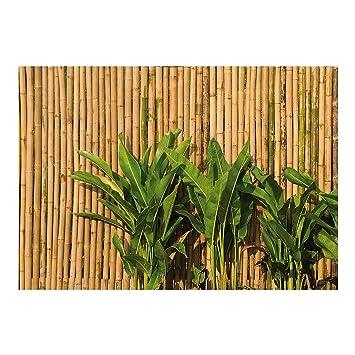 Fototapete Fototapeten Tapete Tapeten No 41 Wall Of Bamboo