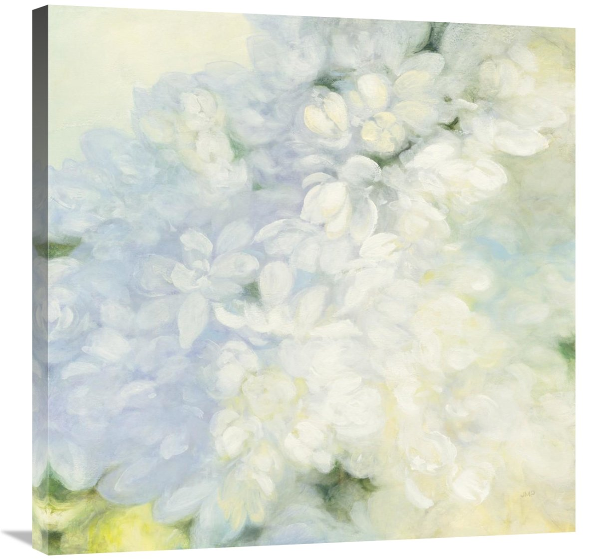 Global Gallery Julia Purinton, White Lilacs Bright' Giclee Stretched Canvas Artwork 30 x 30