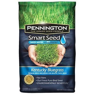 Pennington Seed Smart7LB Kentucky Blend : Garden & Outdoor