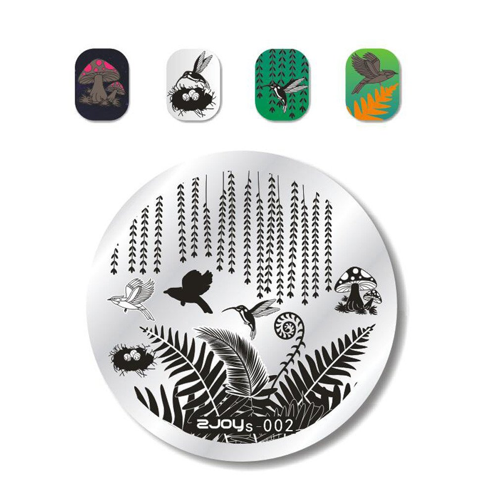 Amazon.com : Hot Sale Nail Art Tips Stickers Hosamtel DIY Nail Decals Image Stamp Stamping Plates Makeup Manicure Template Fashion Nail Cosmetology Plates ...