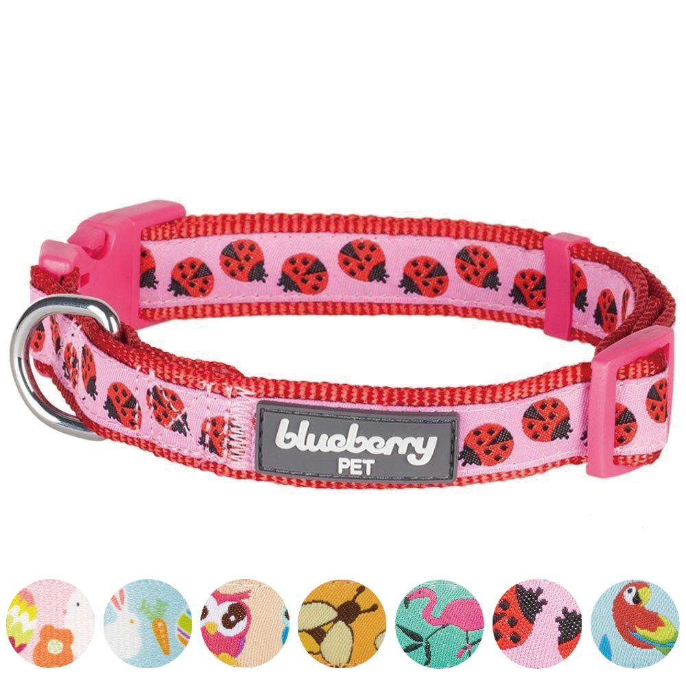 Blueberry Pet 7 Patterns Ladybug Designer Basic Dog Collar, Small, Neck 12''-16'', Adjustable Collars for Dogs