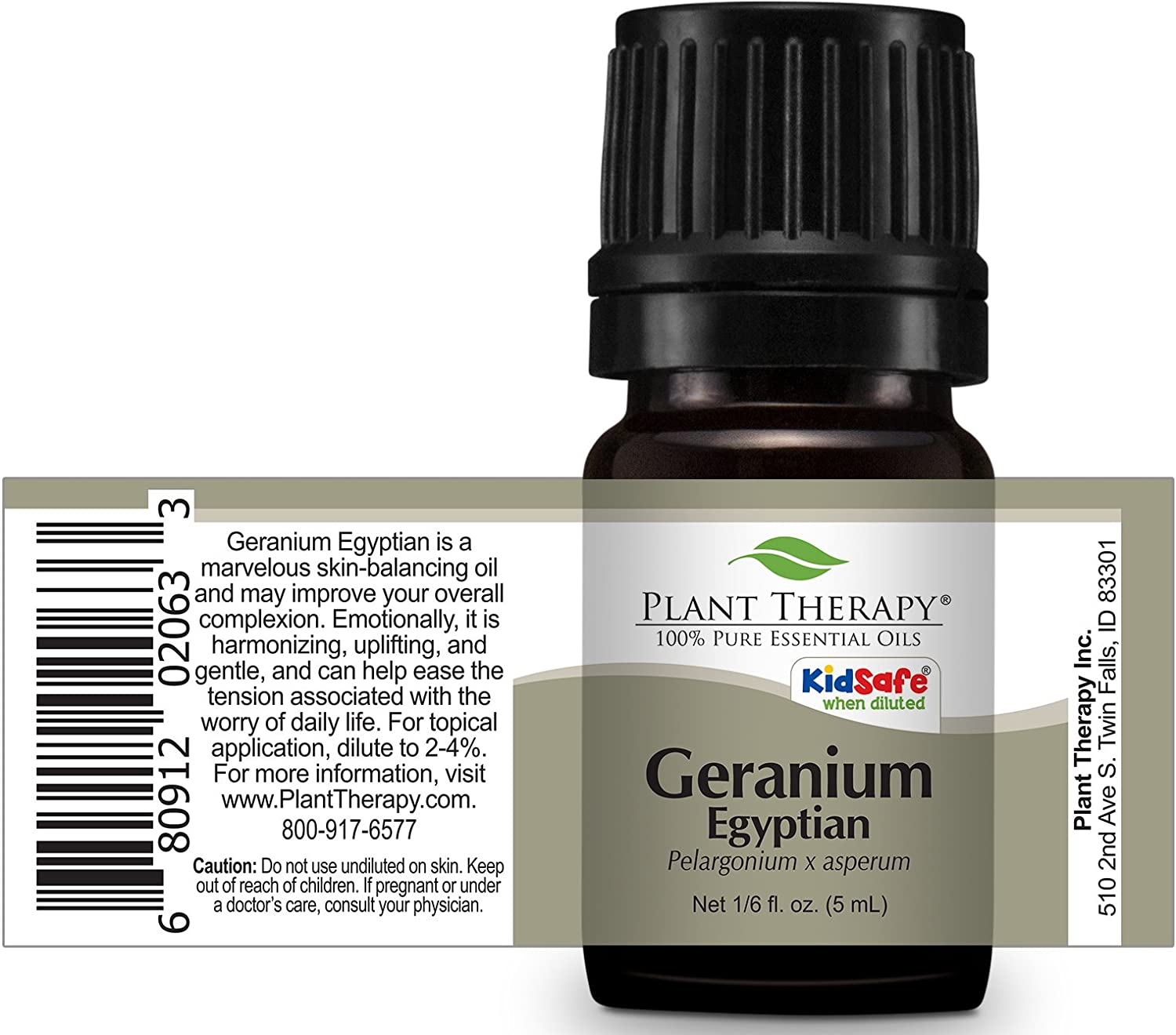 Amazon Plant Therapy Geranium Egyptian Essential Oil 100 Pure Undiluted Therapeutic Grade 5 Ml 1 6 Oz Beauty