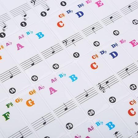 Dilwe Etiqueta Engomada del Piano, Transparente Desmontable Etiquetas Engomadas del Teclado de Piano para 61/88 Key Pianos(Coloreado): Amazon.es: Deportes y ...