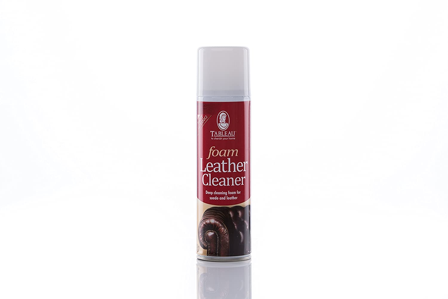 leather cleaning mousse DIY Supplies