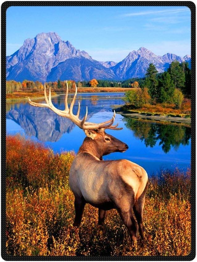 CEZEHAJI JIUDUIDODO Home Bedding & Beautiful Keep Warm Gifts True Love Beautiful th July Elk Blanket Inches X Inches Sofa/Bed Used Gift for Family/Friend