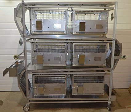 Amazon com: labtechsales Lab Products Inc 6 Cage Excreta