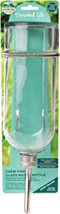 Oxbow Enriched Life Chew-Proof 32 oz Glass Water Bottle for Small Animals
