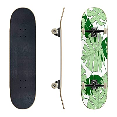 EFTOWEL Skateboards Vector Illustration of Monstera Leaves Seamless Pattern Green Classic Concave Skateboard Cool Stuff Teen Gifts Longboard Extreme Sports for Beginners and Professionals : Sports & Outdoors