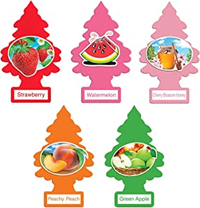 Little Trees Variety Pack (5 Count) Fruity Edition