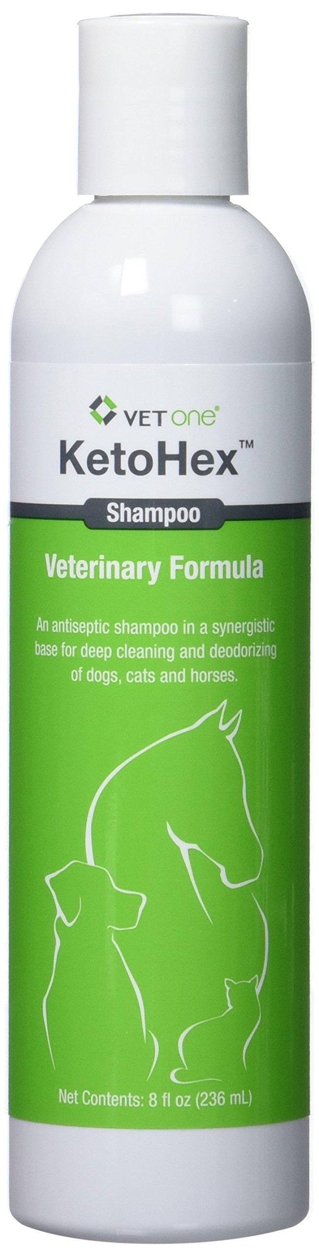 Vet One Ketohex Shampoo, 8 oz