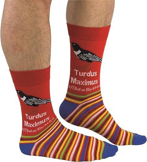 جوارب رجالية من cockney Spaniel - Turdus Maximus- US 7-12