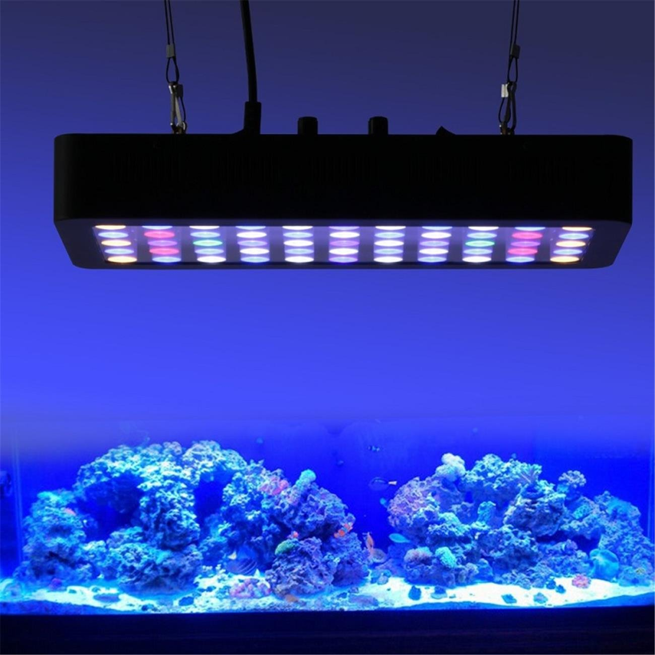 Amazon.com  BEAMNOVA Dimmable 180W LED Aquarium Light Lighting Full Spectrum For Fish Freshwater and Saltwater Coral Tank Blue and White LPS/SPS  Pet ...  sc 1 st  Amazon.com & Amazon.com : BEAMNOVA Dimmable 180W LED Aquarium Light Lighting ... azcodes.com