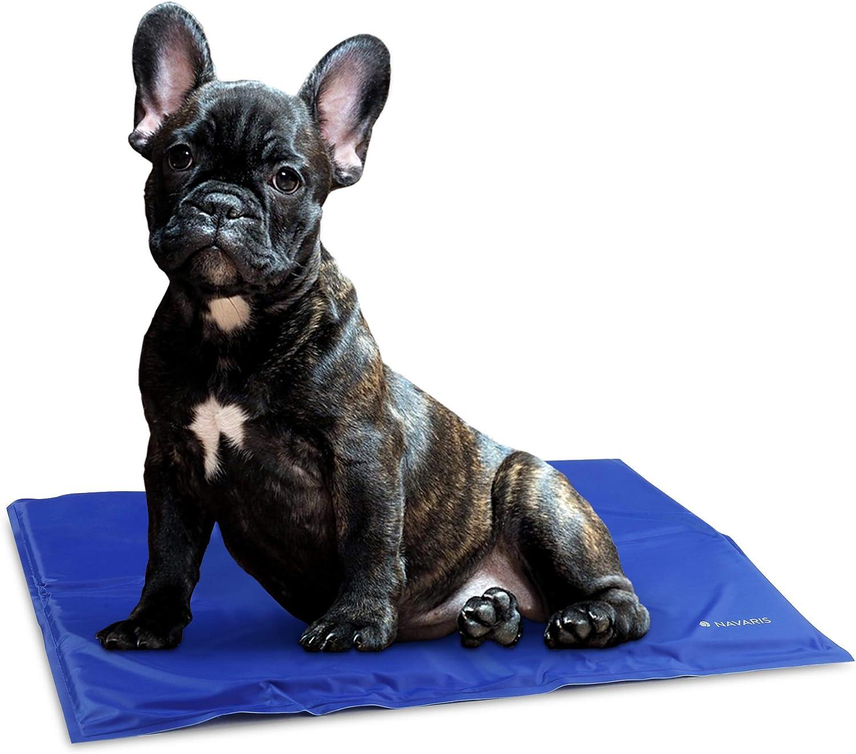 Navaris Alfombra de enfriamiento para Mascotas - Manta refrescante 40x50CM para Perro Gato - Alfombrilla de refrigeración en Azul Oscuro