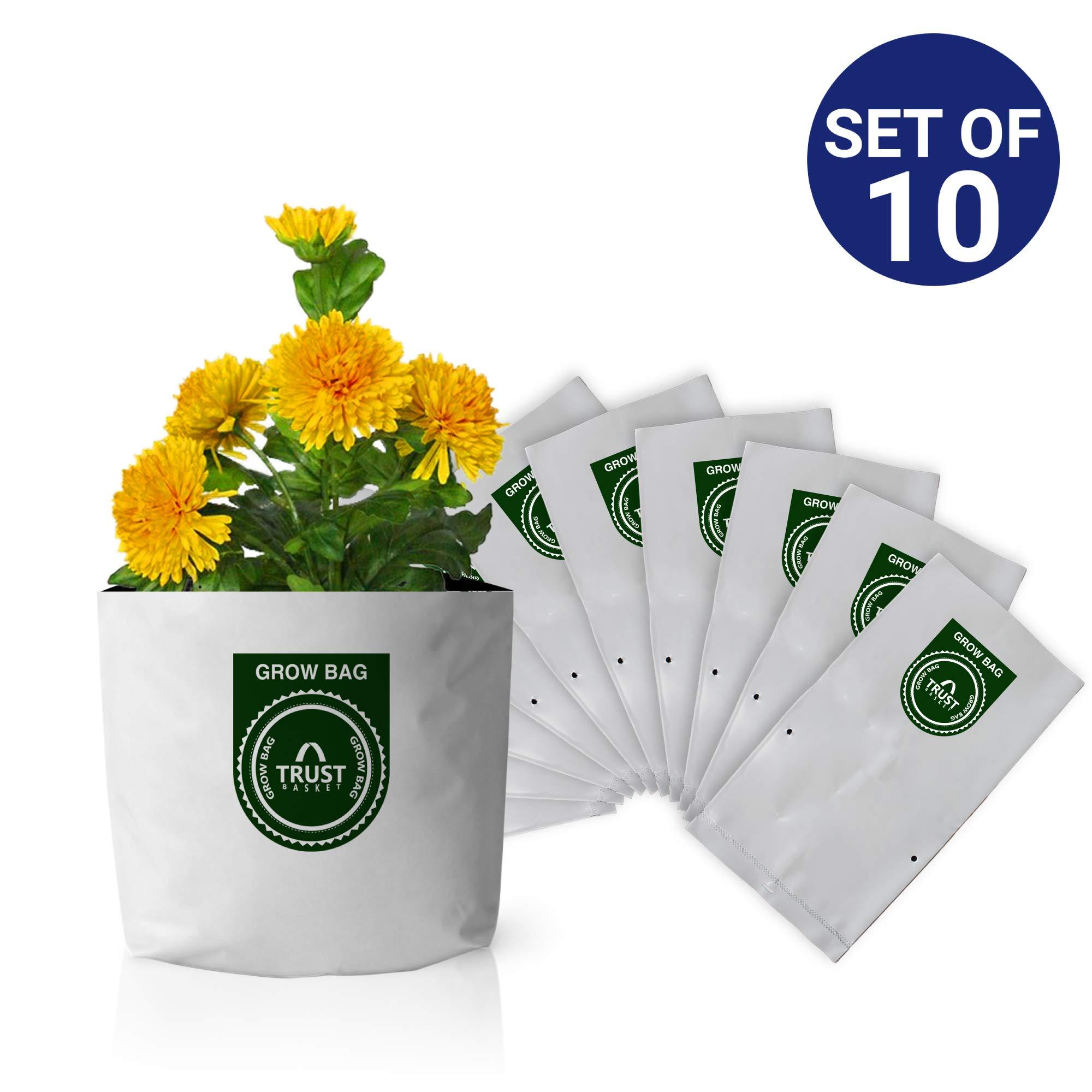 Trust Basket Poly Grow Bags UV Stabilized -10 Qty [20cms(L)X20cms(W)X35cms(H)] product image