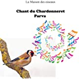 Chant Chardonneret Parva top (La maison des oiseaux)