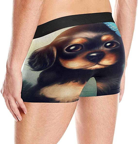 XS-3XL INTERESTPRINT Custom Mens All-Over Print Boxer Briefs Welcome Autumn Leaves