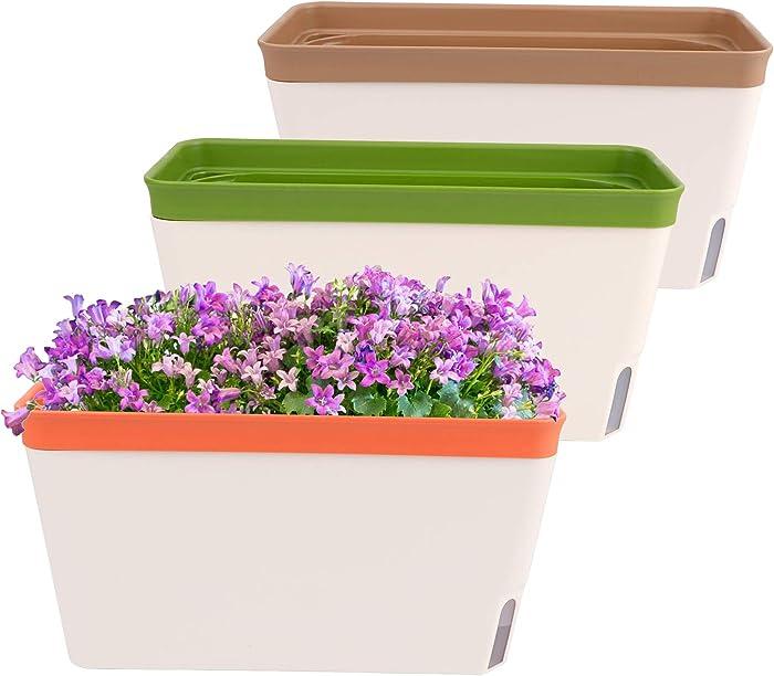 The Best Vegetable Garden Box