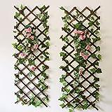 Youmu Wood Wall Treillis extensible Jardin Fleur Plante grimpante Clôture Marron 150cmx30cm