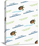 Hammermill Paper, Colors Green, 20lb, 8.5x11, Letter, 500 Sheets / 1 Ream, (103366R), Made in the USA
