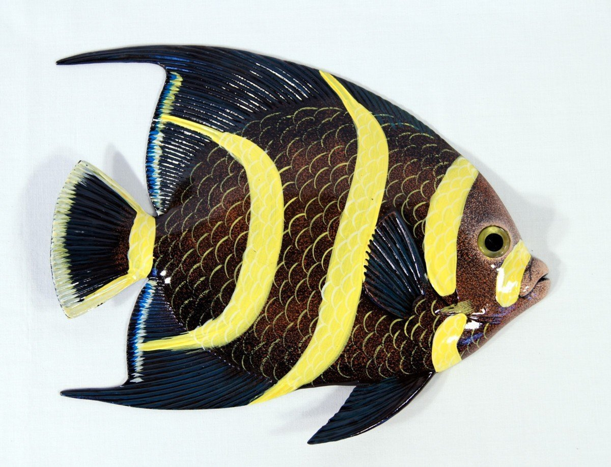 Amazon.com: Handpainted L-A Tropical Fish Replica Wall Mount Decor ...
