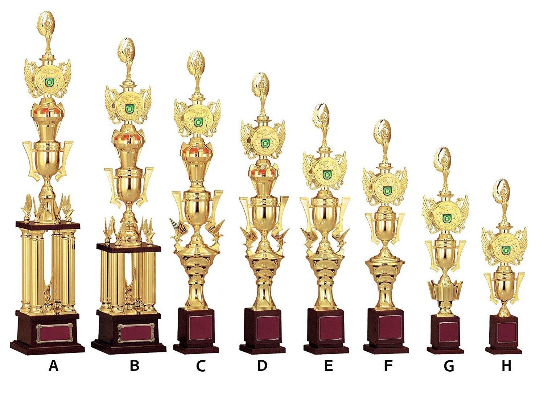 Win V-TOPプレートチェンジ トロフィー JAL-2351 B07H759MTF D:高さ655mm 約470g|088体操  D:高さ655mm 約470g