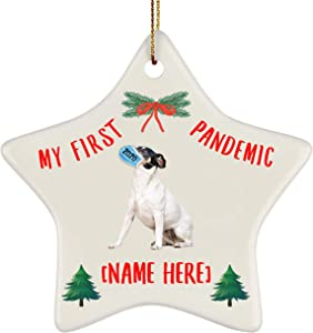 Lovesout Personalized Name Rat Terrier White My First Pandemic Christmas 2020 Star Ornament