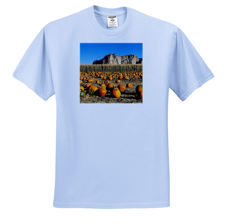 3dRose Danita Delimont ts/_314983 Pumpkin Harvest USA Bend Adult T-Shirt XL Oregon Oregon