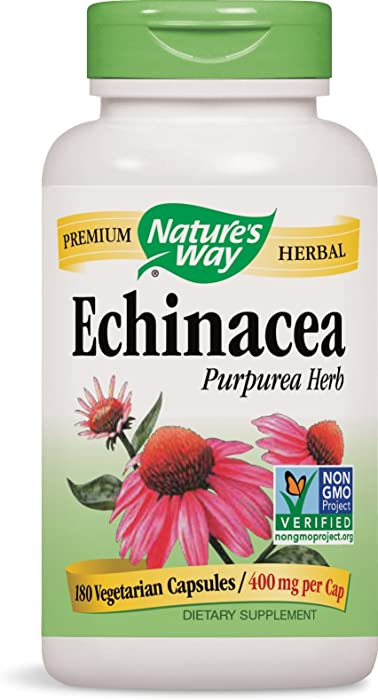 Top 9 Nature Echinacea