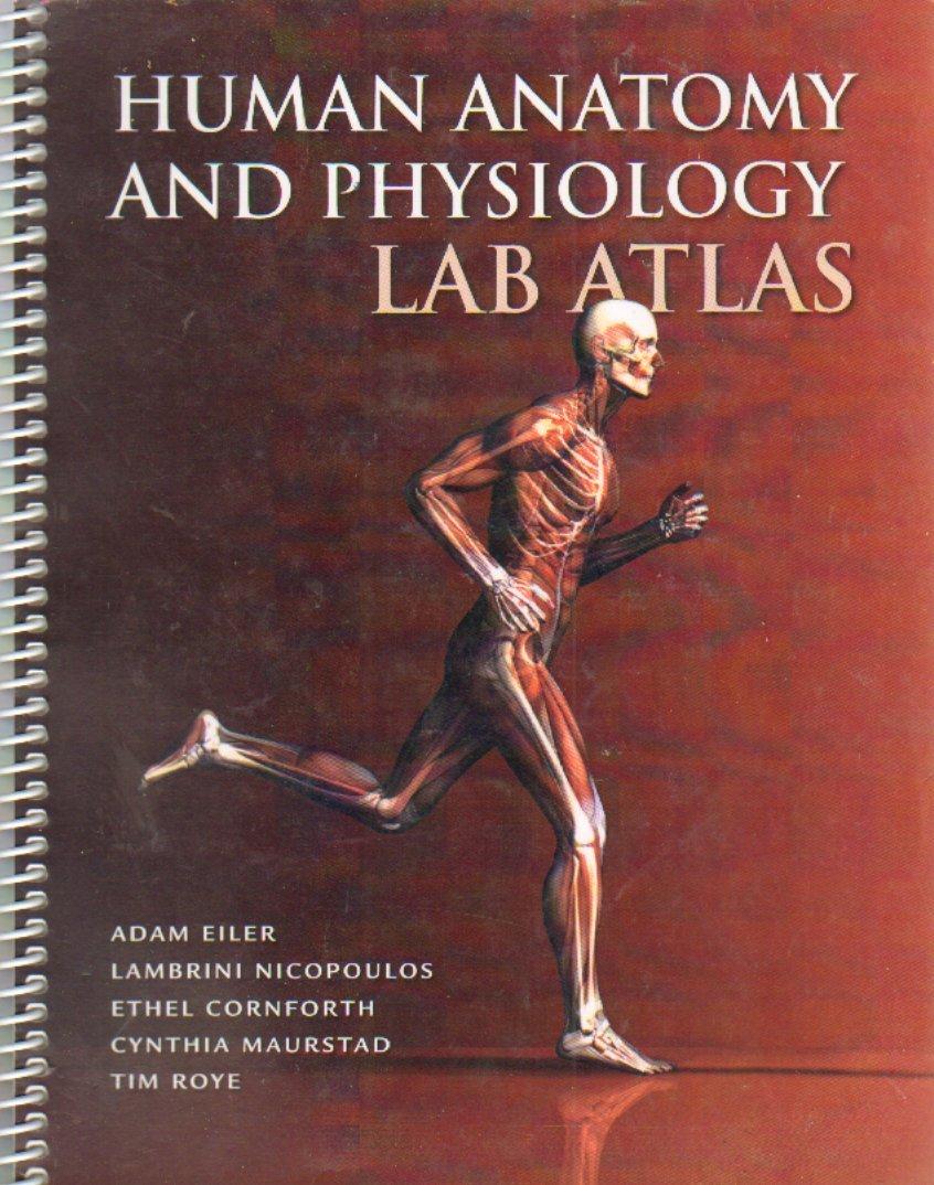 HUMAN ANATOMY AND PHYSIOLOGY LAB ATLAS: Adam Eiler Lambrini ...