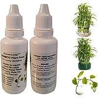 GreenLoop - Bamboo Plant Food (& for Money Plants)