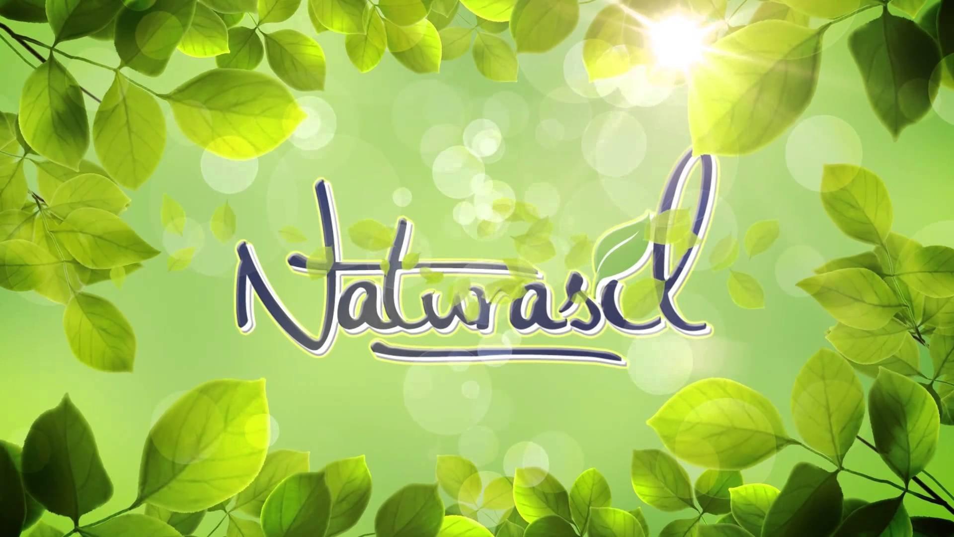 Naturasil Pet Mange Treatment for Sarcoptic and Demodectic Mange, 60 ml