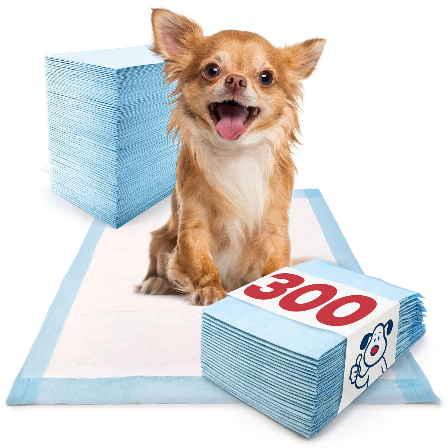 ValuePad Puppy Pads, Small 17x24 Inch, 300 Count - Economy Training Pads for Dogs, Leak Resistant 5-Layer Design, Perfect for Puppies, Smaller Dogs & Even Litter Boxes by ValuePad