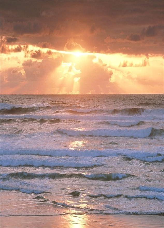 Vinyl 8x6.5ft Vintage Wooden Bridge Seascape Backdrop Sea Island Sunset Glow Sky Flying Birds Backgrous for Photography Summer Holiday Travel Theme Photo Backdrop Wallpaper Portraits Shoot