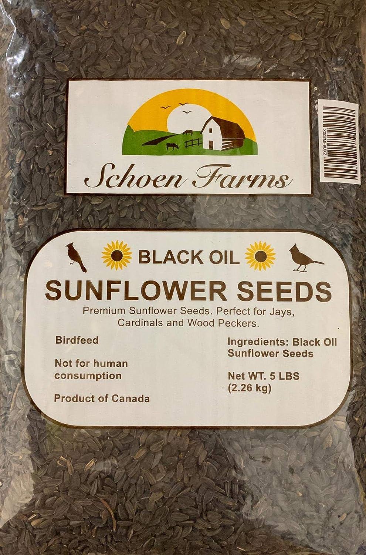 5 Pound Schoen Farms Black Oil Sunflower Seeds for Birds,