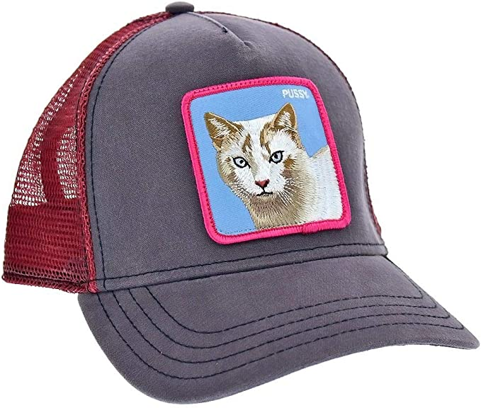 GORRA GOORIN BROS BASEBALL CAT - 00, marrón: Amazon.es: Ropa y ...