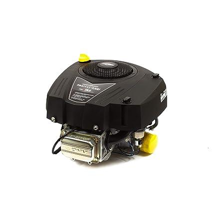Amazon.com: Briggs & Stratton Motor empaquetado individual ...
