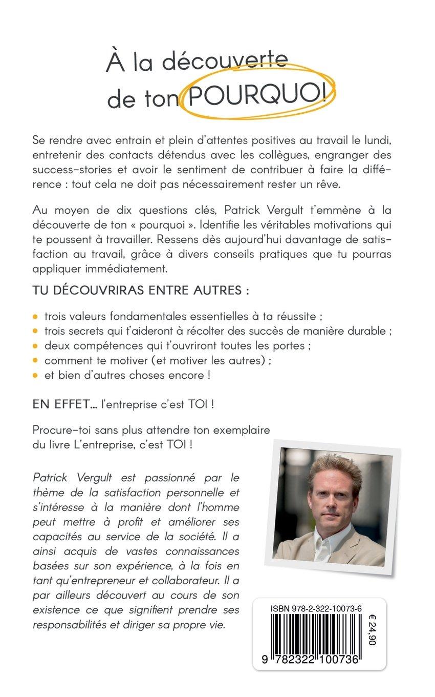 L'Entreprise, C'Est Toi (French Edition): Patrick Vergult